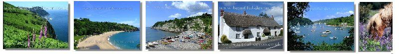 Devon Tourist and Travel Information with pictures